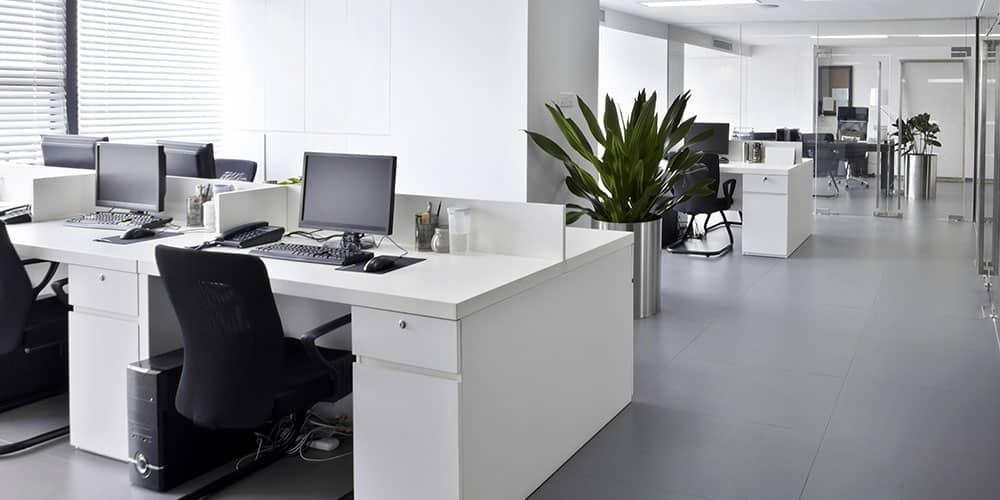 workstation-assessment